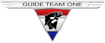 G.T.O. Guide Team One